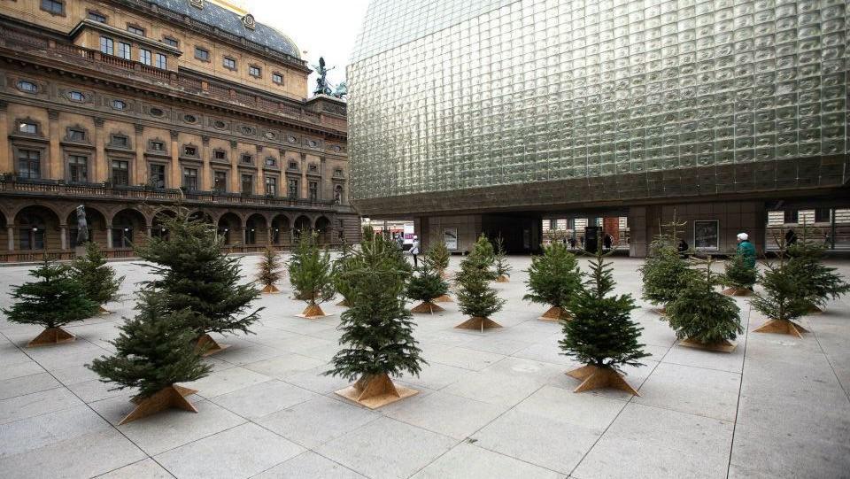 Druhá šance pro vánoční stromky na piazzetě Národního divadla v Praze