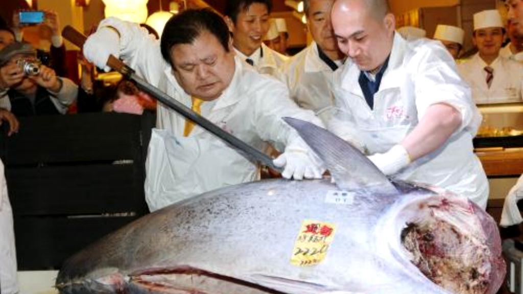 Obrovský tuňák