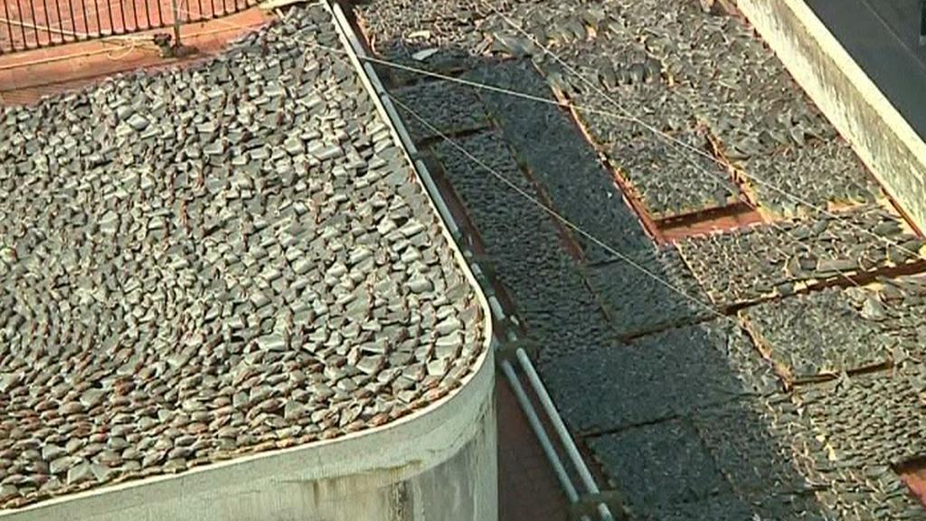 Žraločí ploutve na střechách