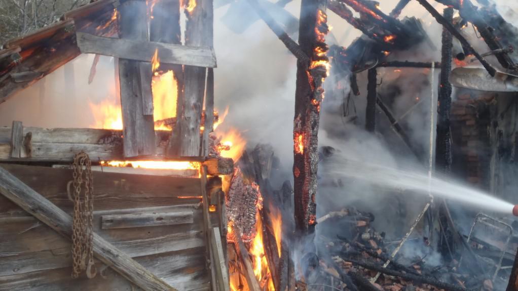 Při požáru se popálila také tři hospodářská zvířata: kráva a telata