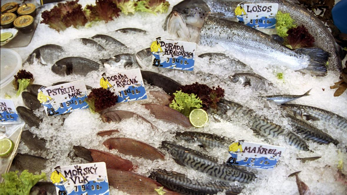 Prodej ryb