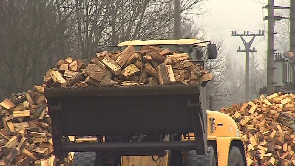 Největší zájem je o tvrdá dřeva