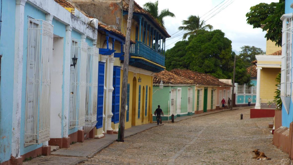 Pestrobarevný Trinidad