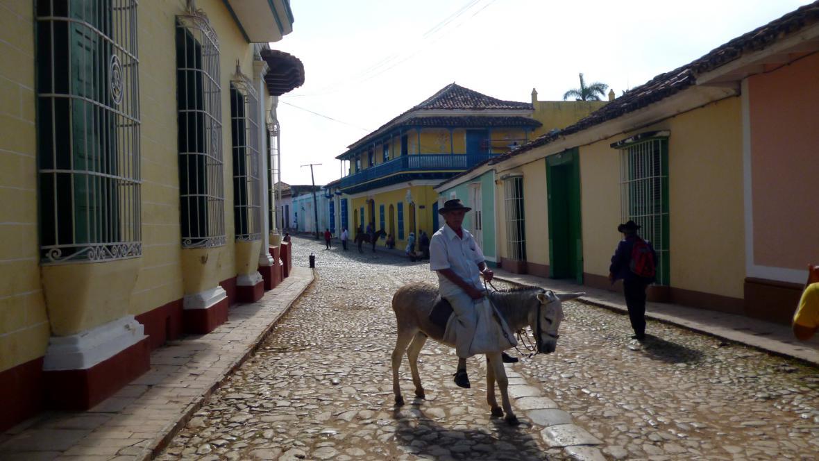 I osla na Kubě tu a tam potkáte