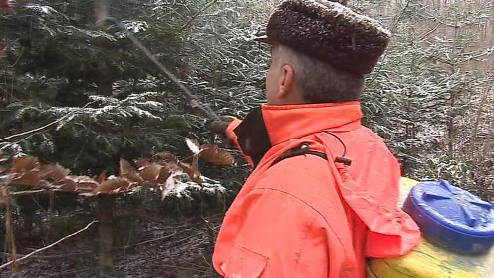 Stromky má před zloději ochránit i postřik