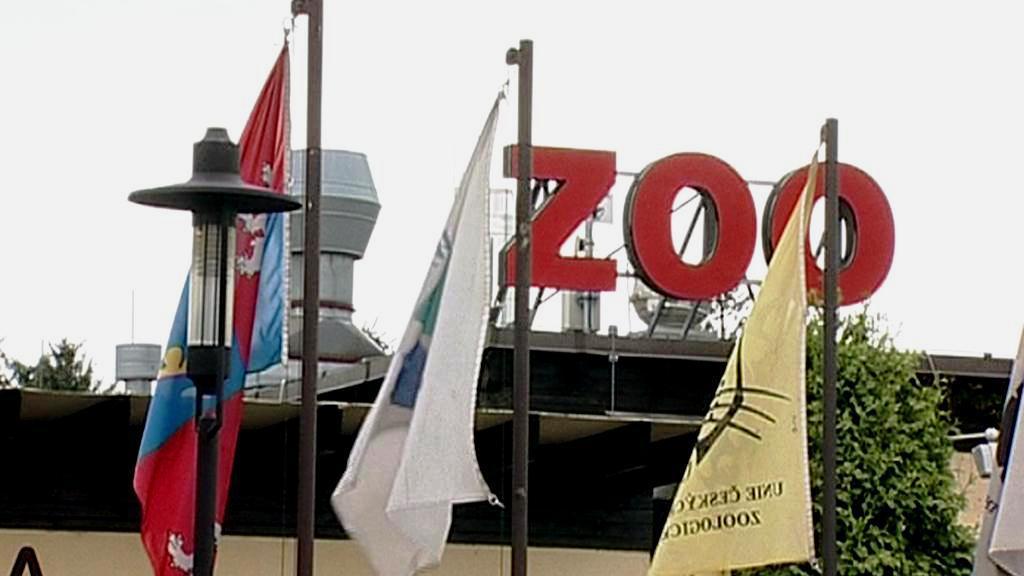 Zoo ve Dvoře Králové