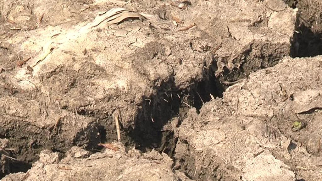 Vyprahlá půda