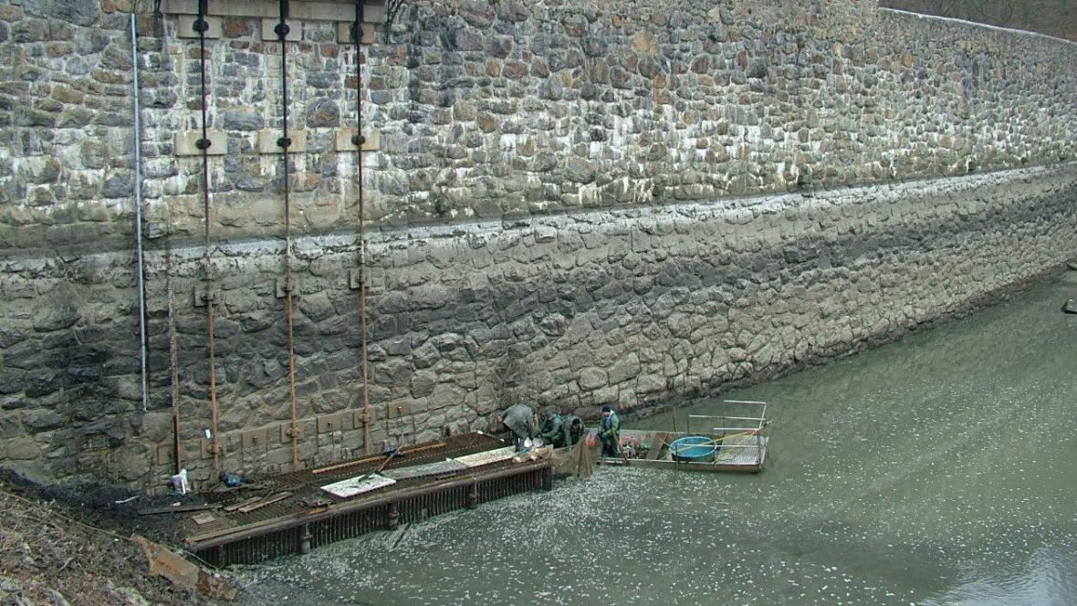 Výlov Jevišovické přehrady