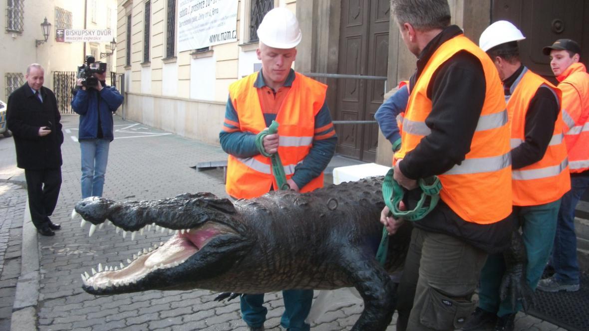 Drak váží 200 kilogramů