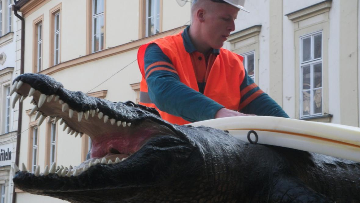 Brněnský drak je zhruba 400 let starý