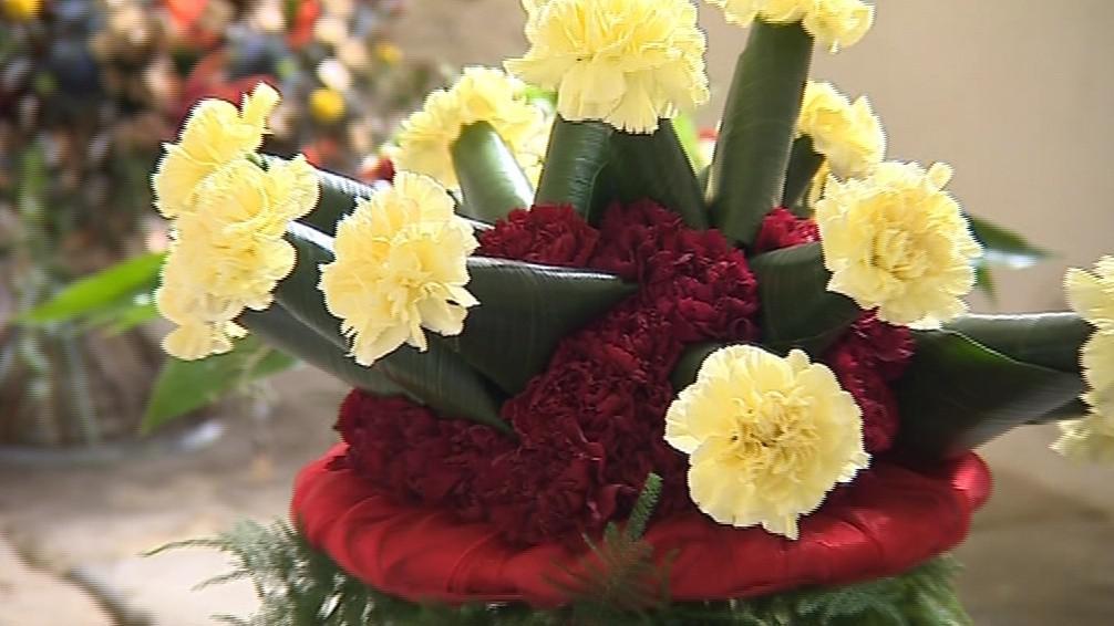 Brněnská růže je největší soutěží svého druhu u nás