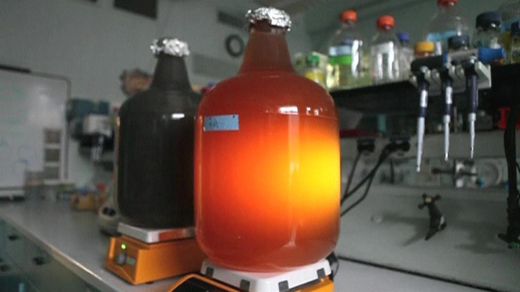 Mobilní bioreaktor