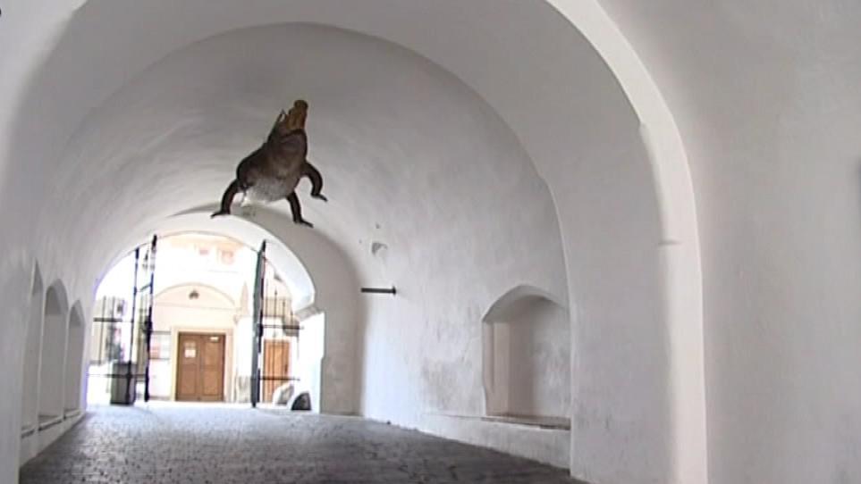 Do průchodu na Staré radnici se drak vrátí za necelé dva týdny