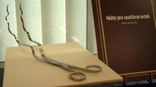 Nůžky na zastřižení nehtů
