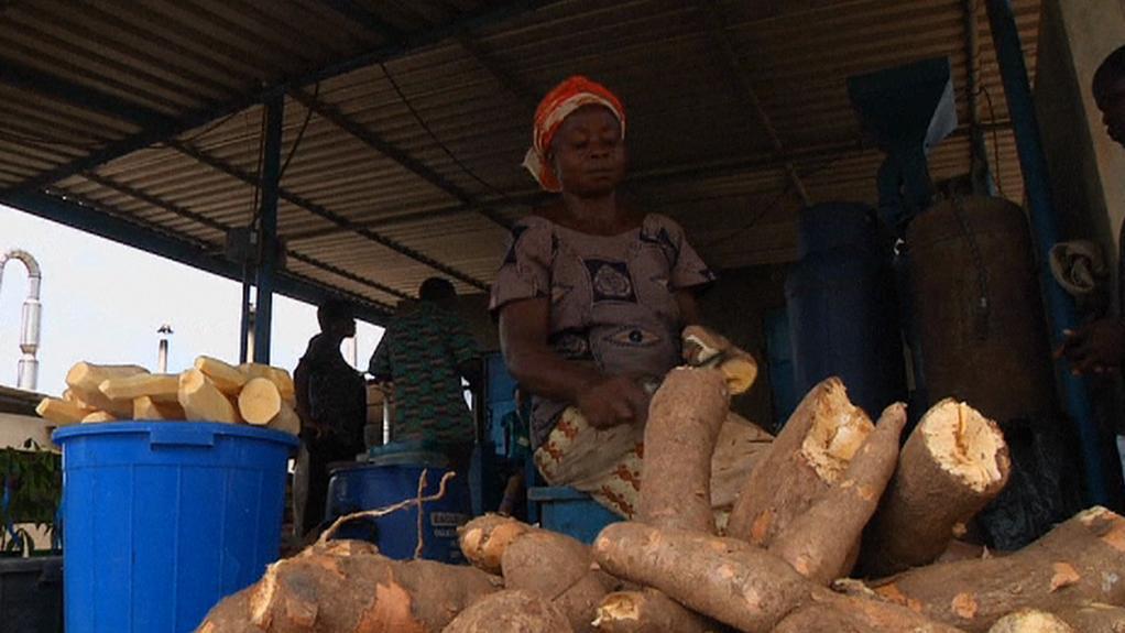 Zpracování manioku