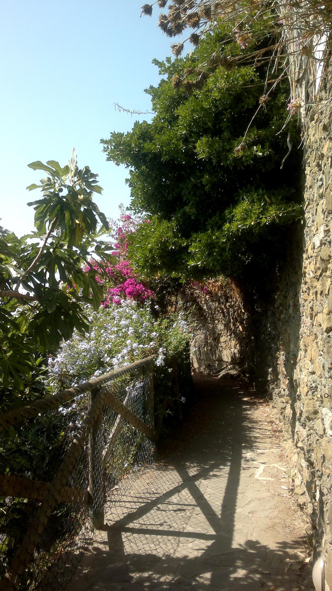 Vesničky Cinque Terre spojují chodníky ve skále