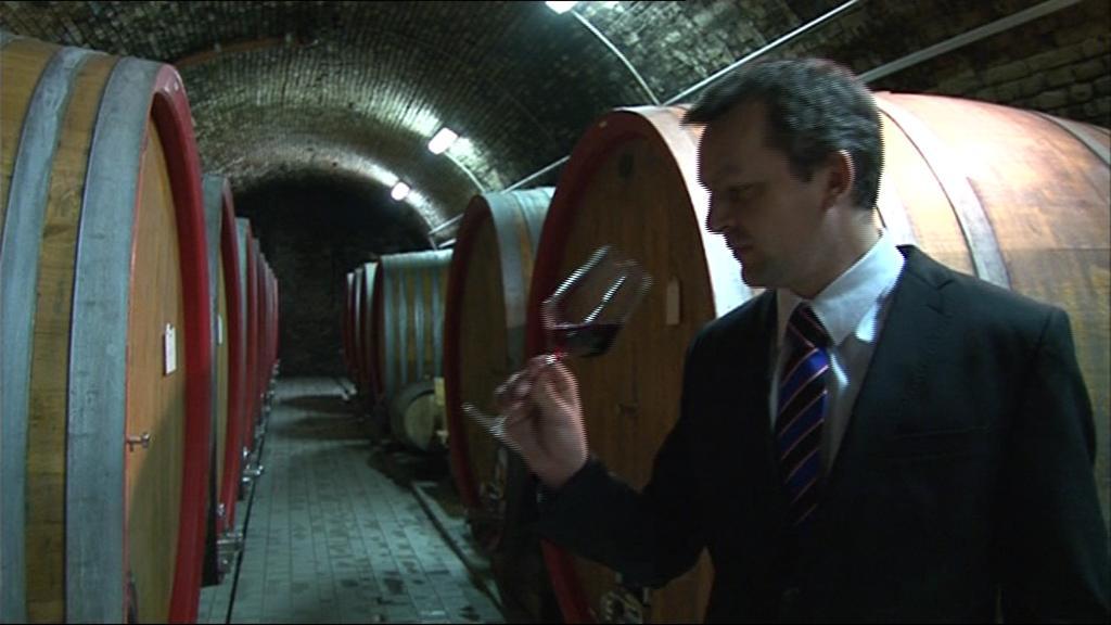 Ochutnávka svatomartinských vín 2012