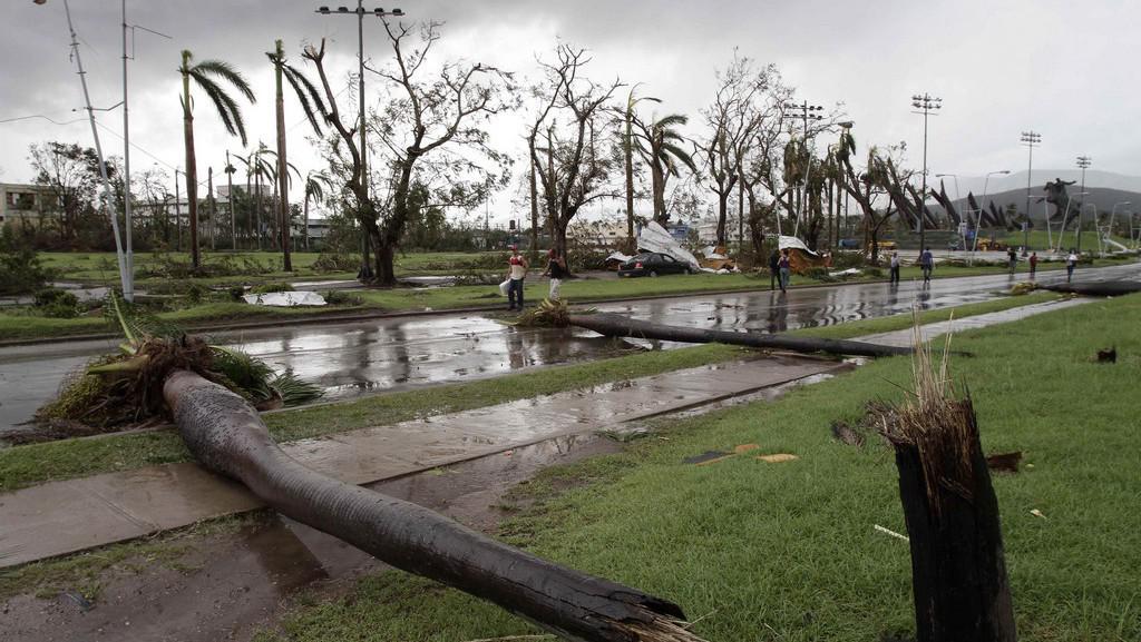 Popadané palmy následkem hurikánu Sandy na Kubě