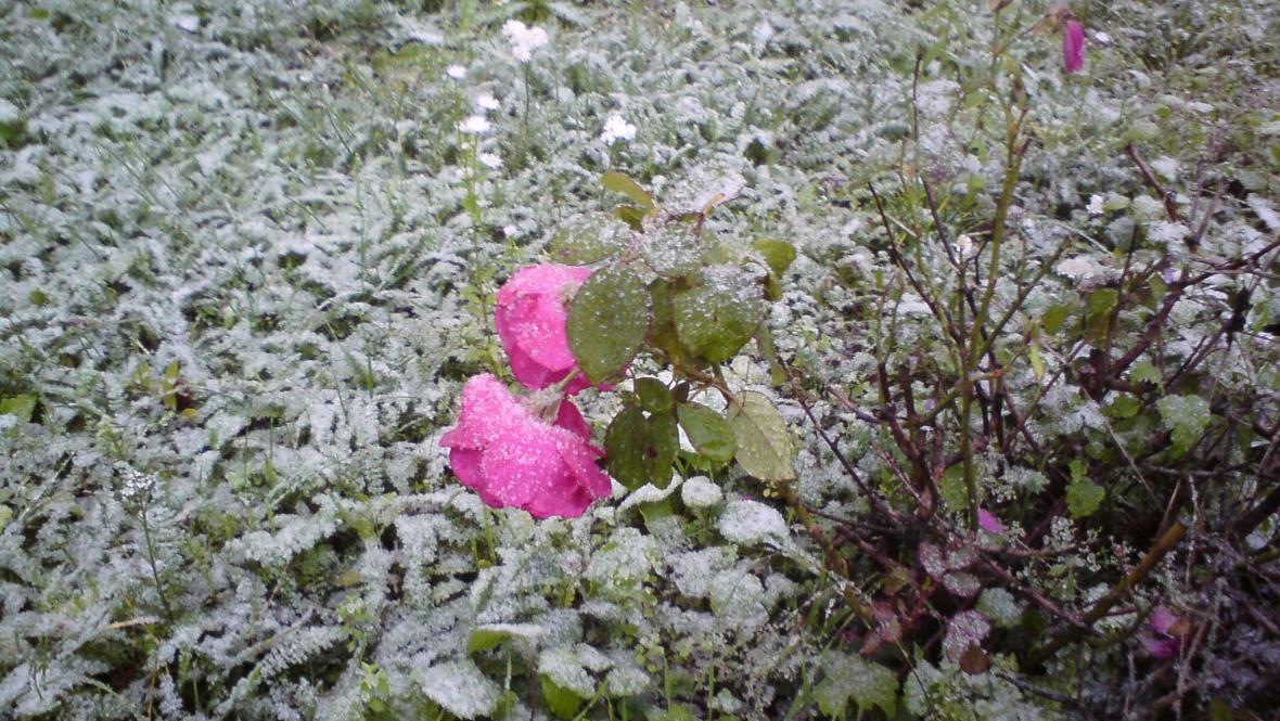 První sníh v Praze
