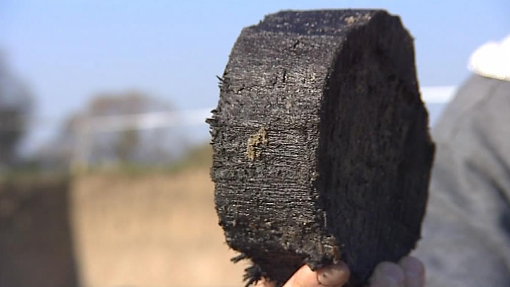 Dřevo původních kůlů zakonzervovala spodní voda se sedimenty