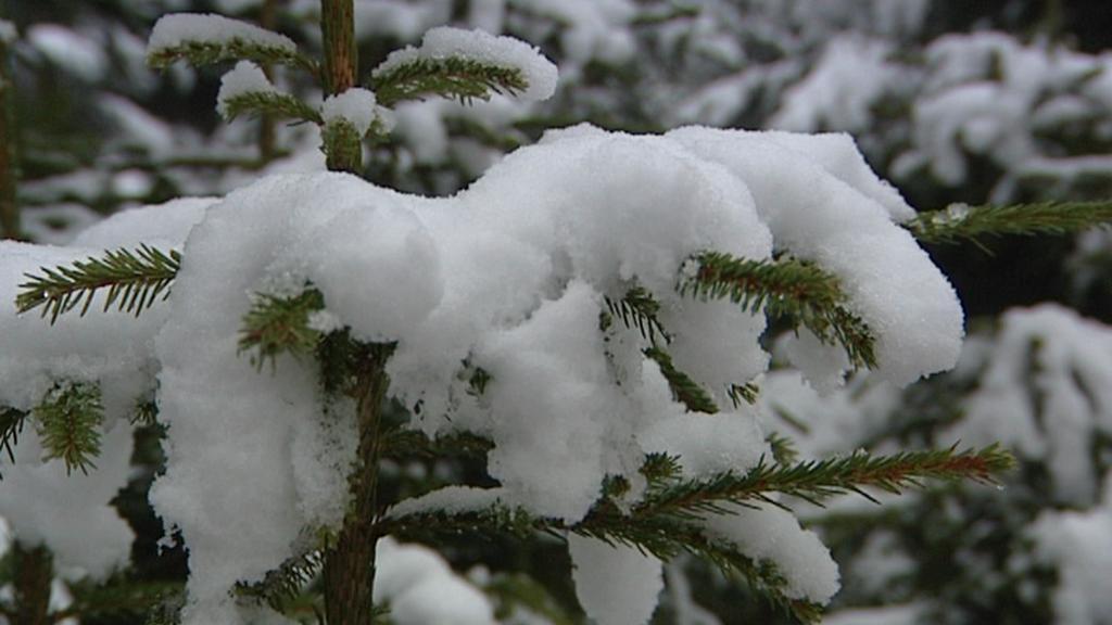 První sníh v Čechách
