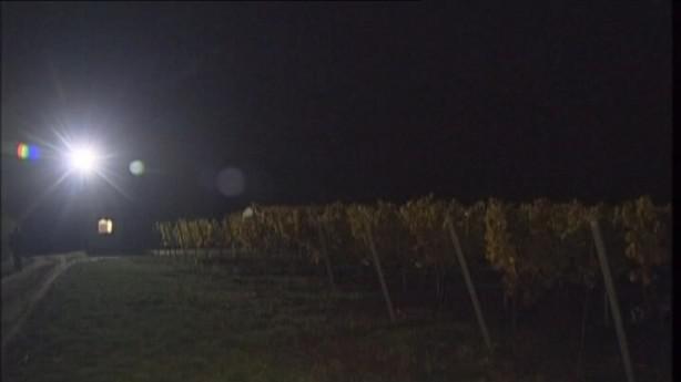 Noční hlídání vinic není vždy jednoduché