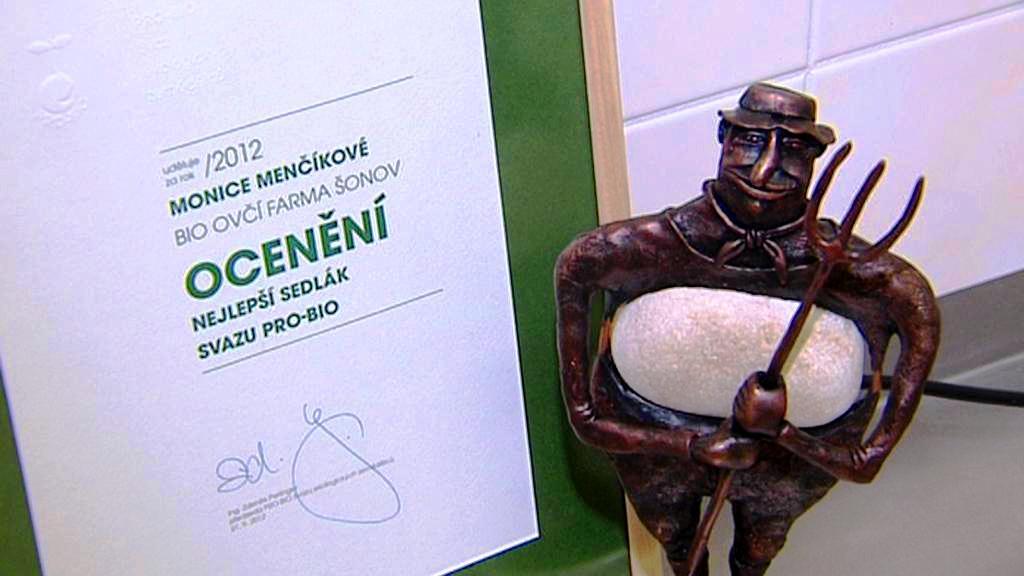 Ocenění pro Moniku Menčíkovou