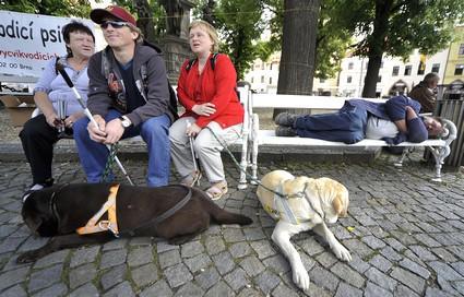 Nevidomí s vodicími psy