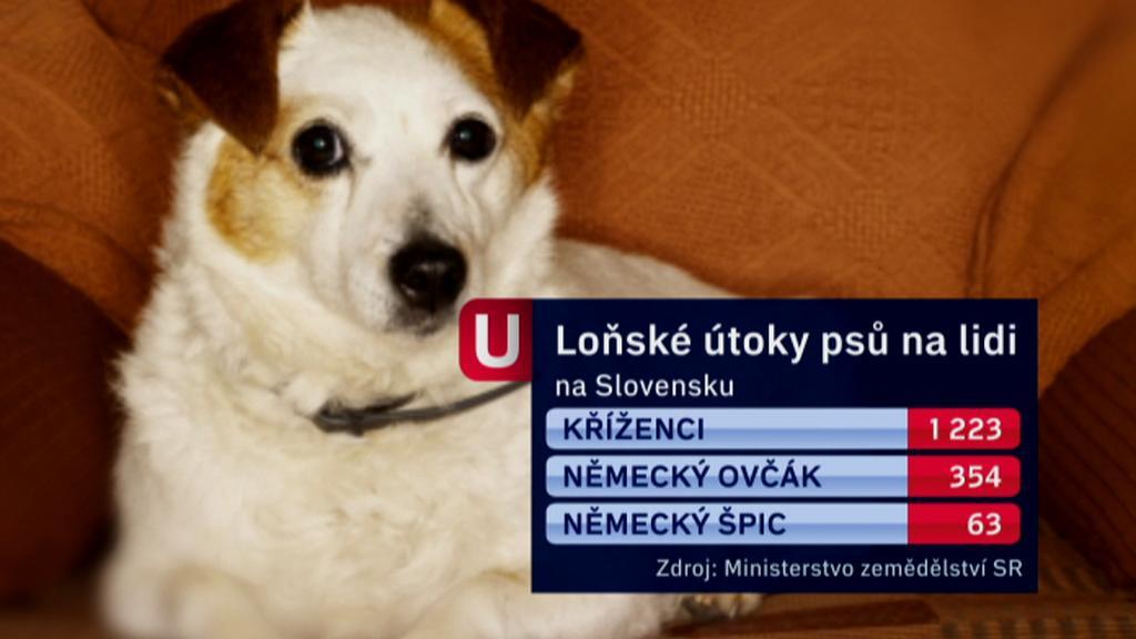 Útoky psů