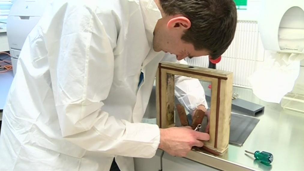 Mladí vědci z Brna mají slibné výsledky