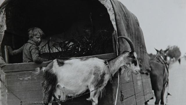 Bez názvu (1932–36)
