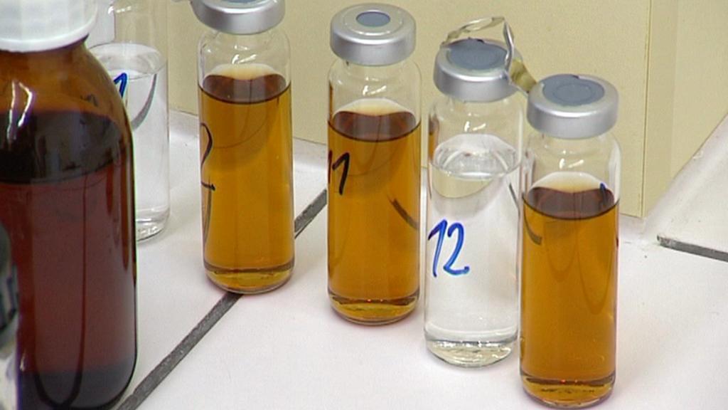Kontrola vzorků v laboratoři