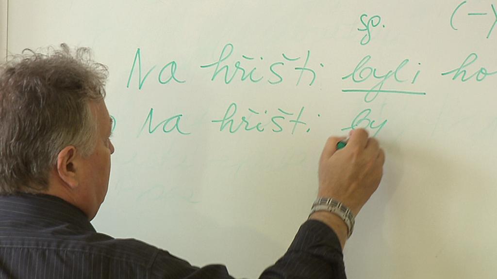 Výuka češtiny