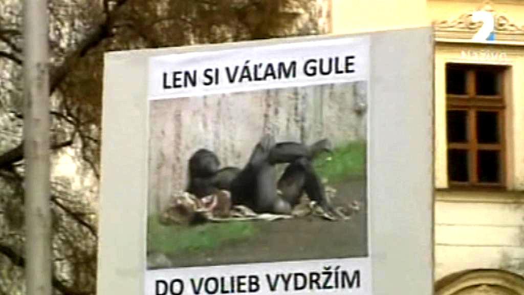 Kauza Gorila