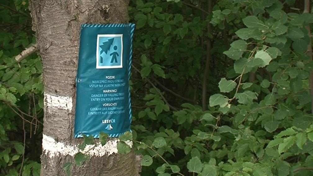 Do lesa je zakázaný vstup