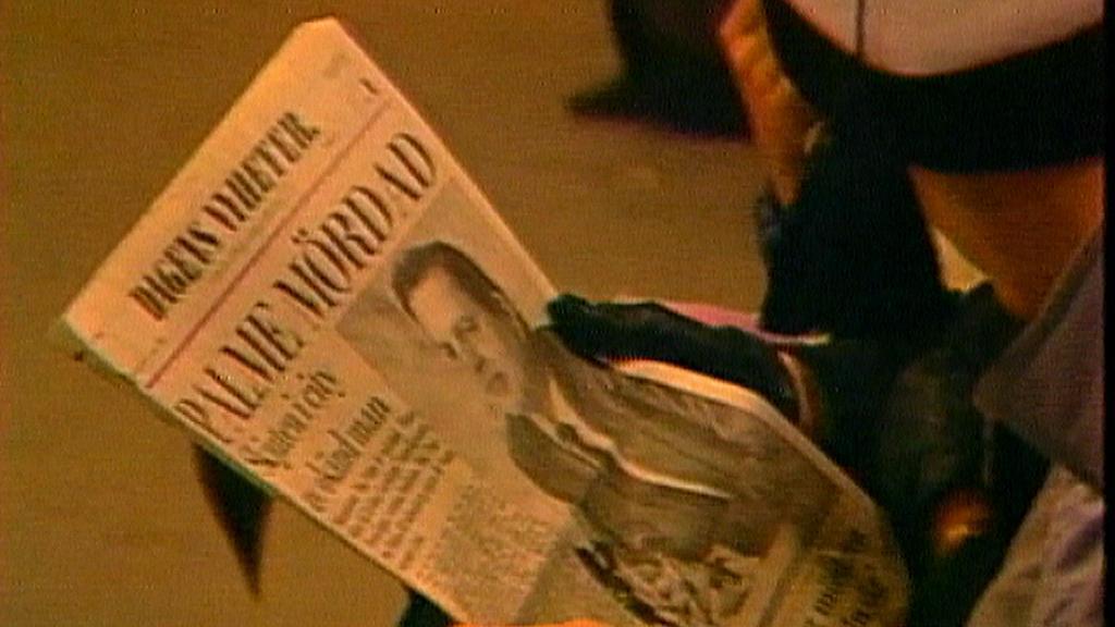 Palme v novinách
