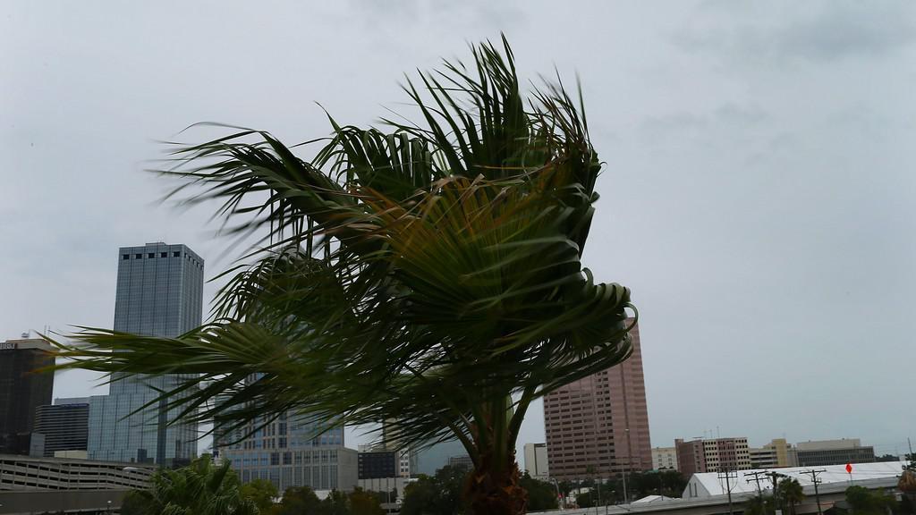 Tampa ve větru
