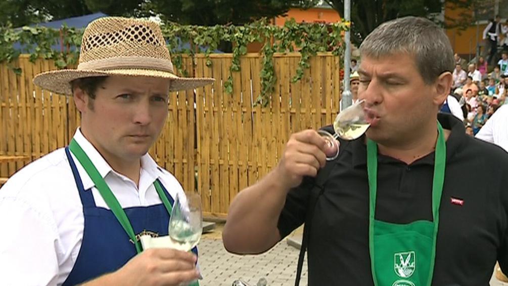 Hodnotitele zaujala vůně, chuť i barva vín