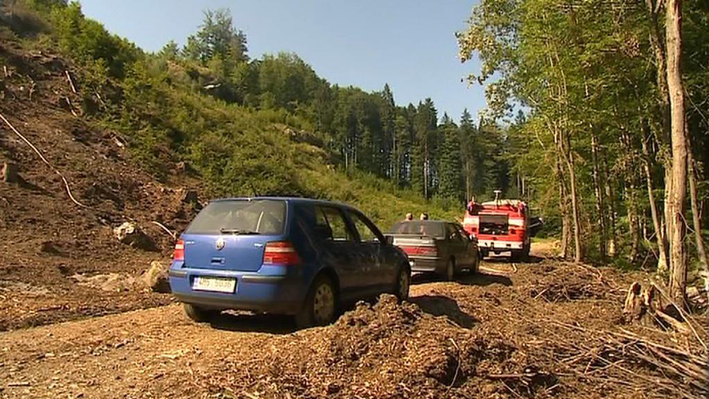 Vykácený les na Šumpersku