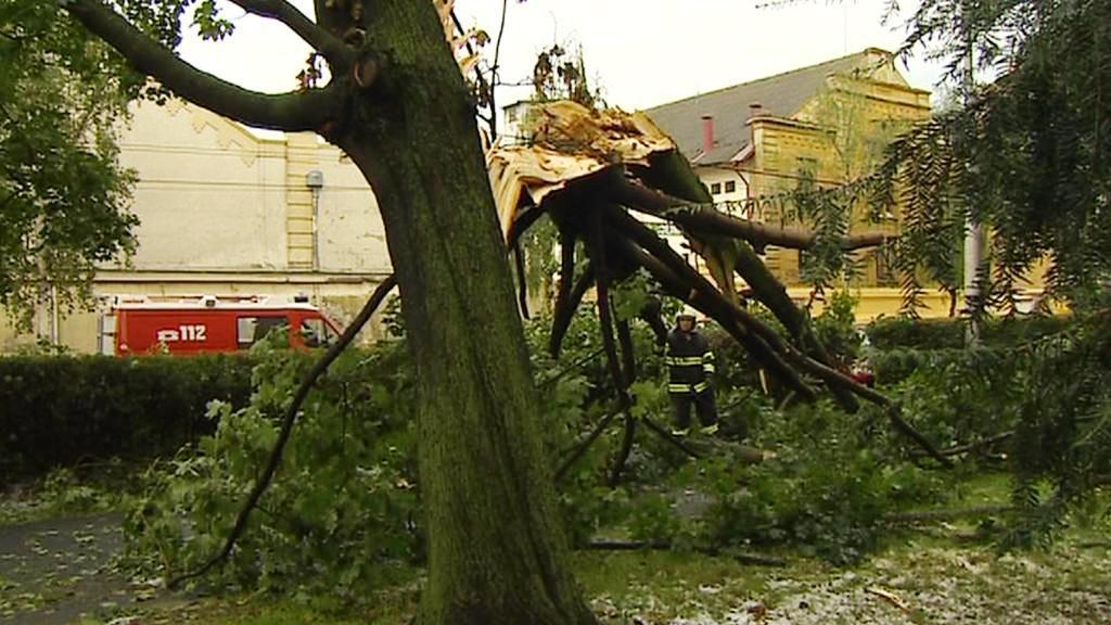 Následky bouřky v jižních Čechách