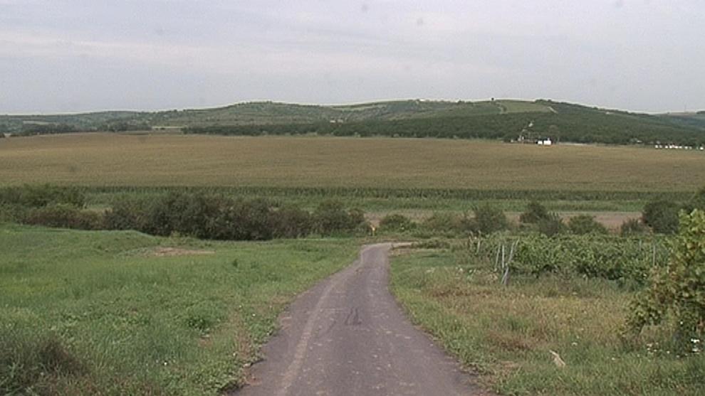 Na tomto poli v Bořeticích kdysi bývalo jezero