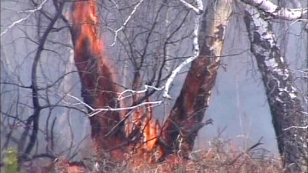 Sibiř v plamenech
