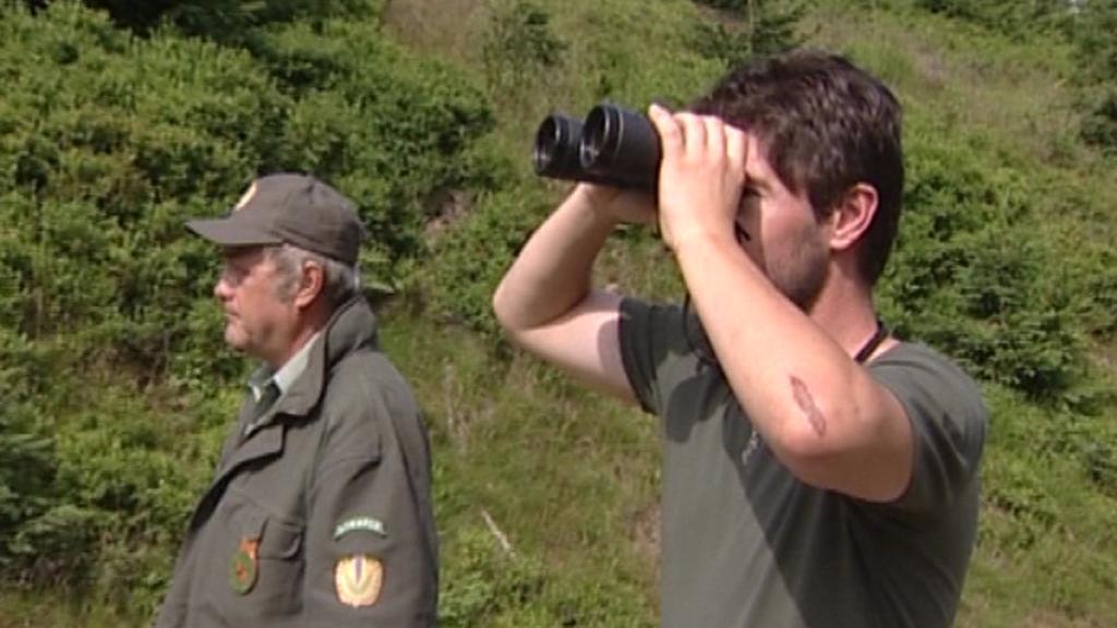 Stráž přírody v Krkonoších