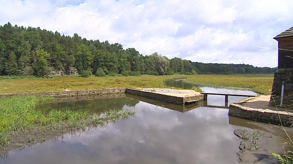Vypuštěný Novozámecký rybník