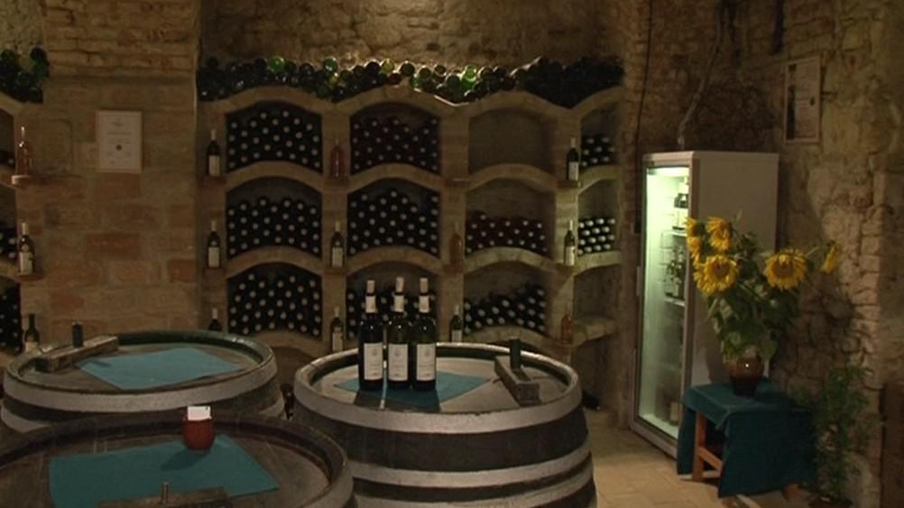 Sklep valtické vinařské školy