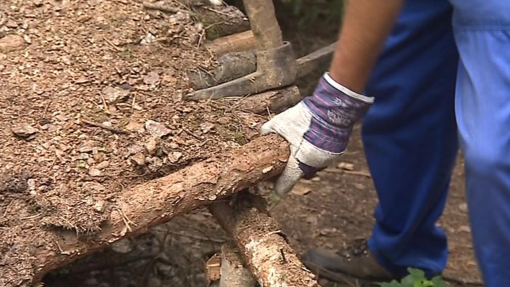 Freerideři si v lese postavili vlastní překážky