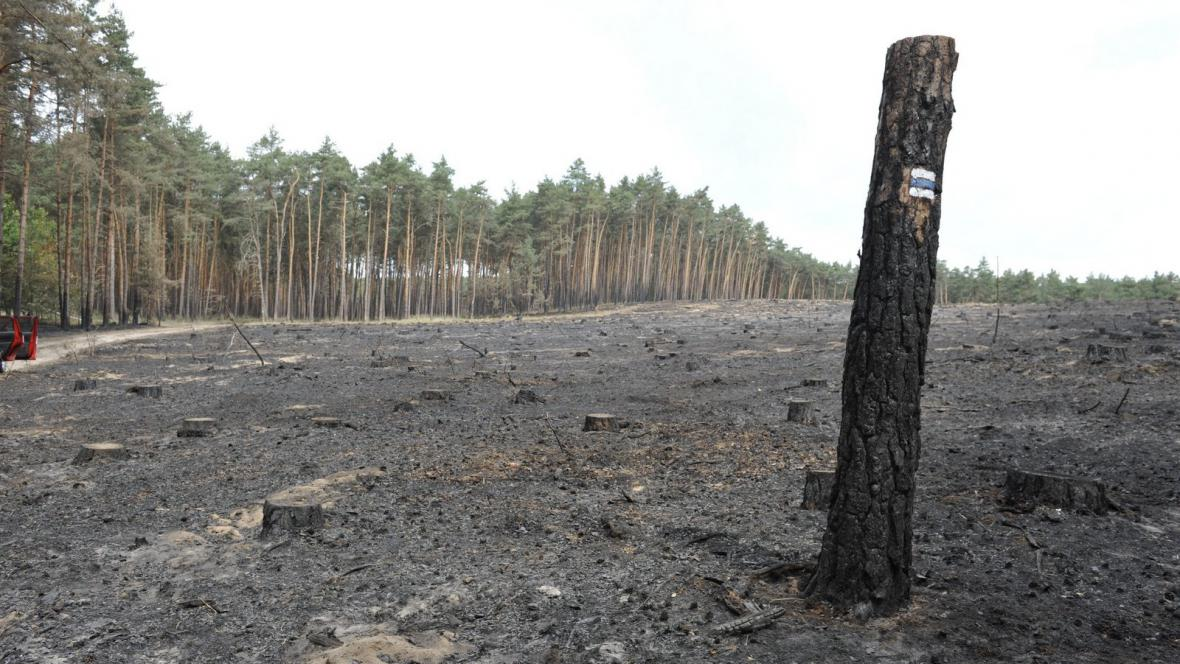 Následky požáru u Bzence