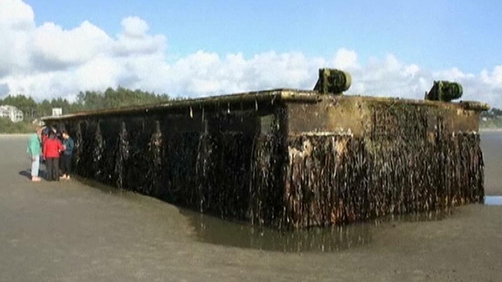 Vyplavený dok