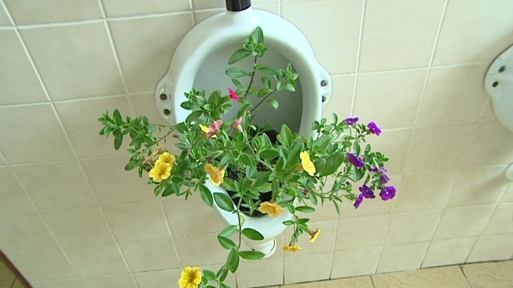 """Pisoár na """"dámském záchodě"""""""