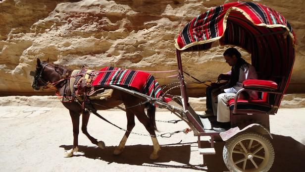 Beduín s oslem míří za turisty